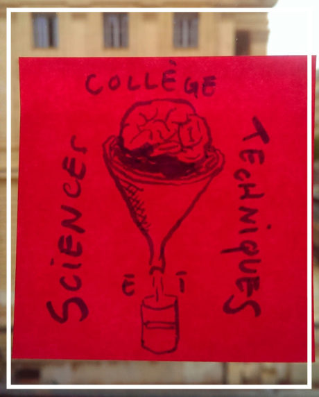 Collège Sciences & Techniques